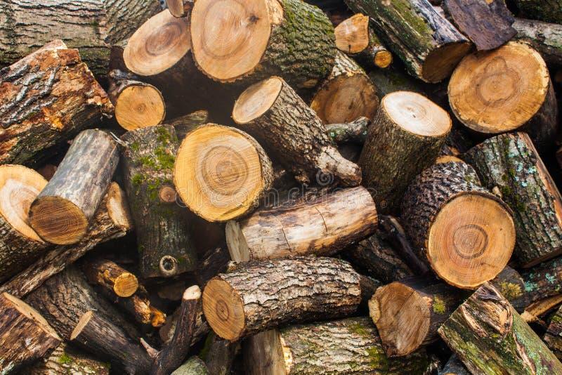 Tas de bois de bois de charpente coupé Pile des rondins en bois Bois de construction empilé de bois de chauffage photographie stock libre de droits