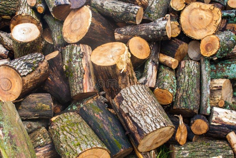 Tas de bois de bois de charpente coupé Pile des rondins en bois Bois de construction empilé de bois de chauffage photo stock