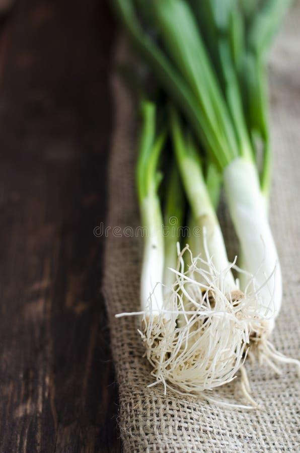 Tas de jeune oignon frais photo stock