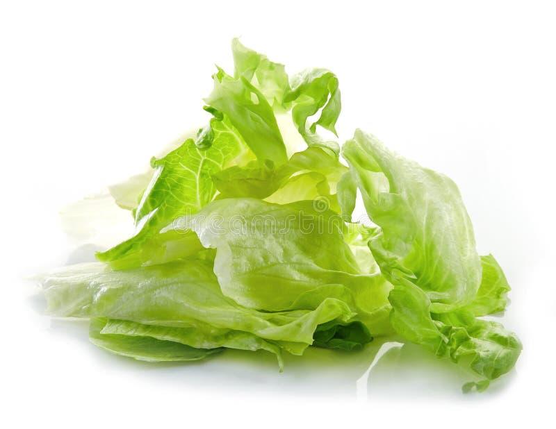 Tas de salade 'Iceberg' photos stock