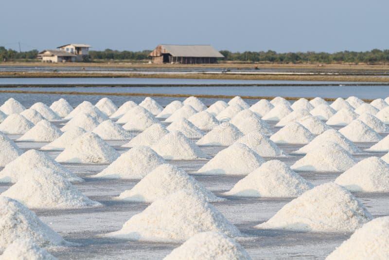 Tas de sel dans le domaine de sel avant récolte images stock