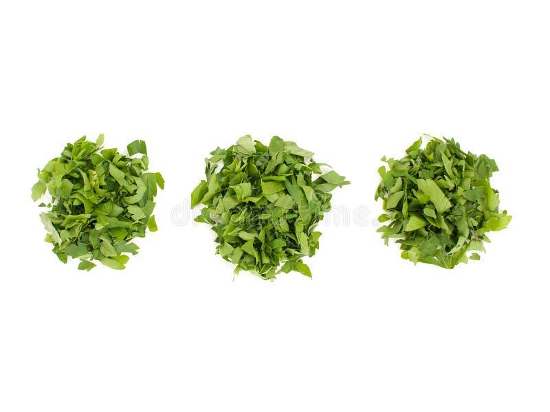 Tas des feuilles coupées négligemment disposé dans trois tas des feuilles de persil Assaisonnement parfumé pour des plats de vegg images libres de droits