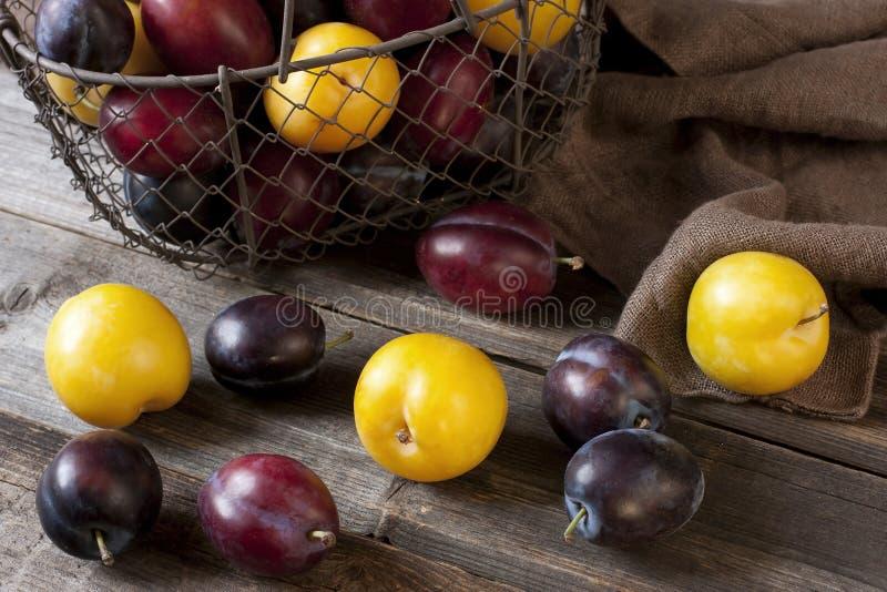 Tas des prunes colorées douces mûres photos stock
