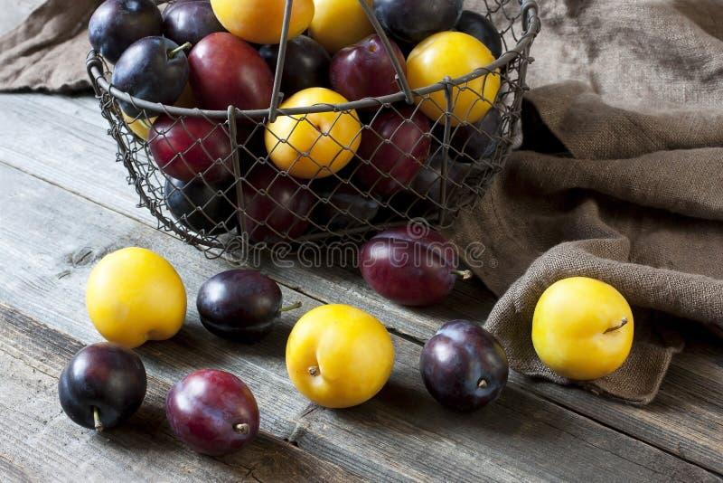Tas des prunes colorées douces mûres photographie stock libre de droits