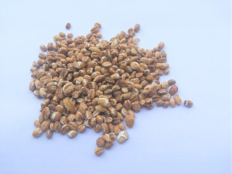 Tas rôti de grain d'avoine sur le fond blanc photographie stock