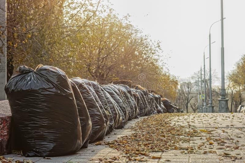 Taschen mit gefallenen Blättern auf der Straße stockbilder