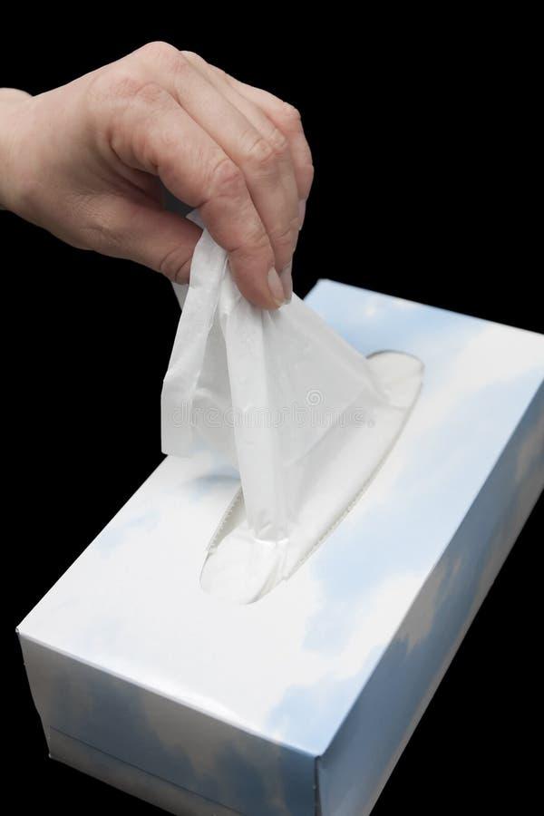 Taschentuch stockfotografie