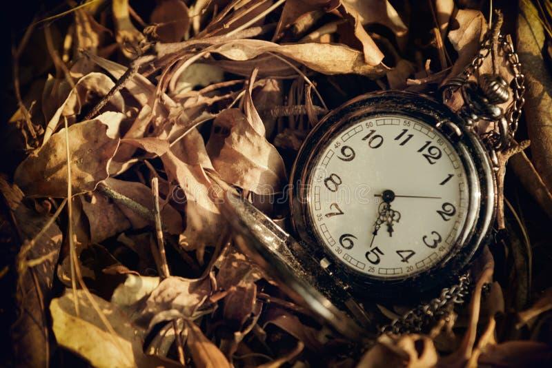 Taschenuhr vor dem hintergrund der getrockneten Blätter lizenzfreie stockfotos