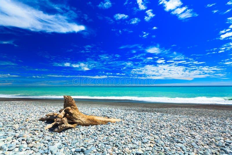 Tasman sea. Coast of the Tasman sea stock photo