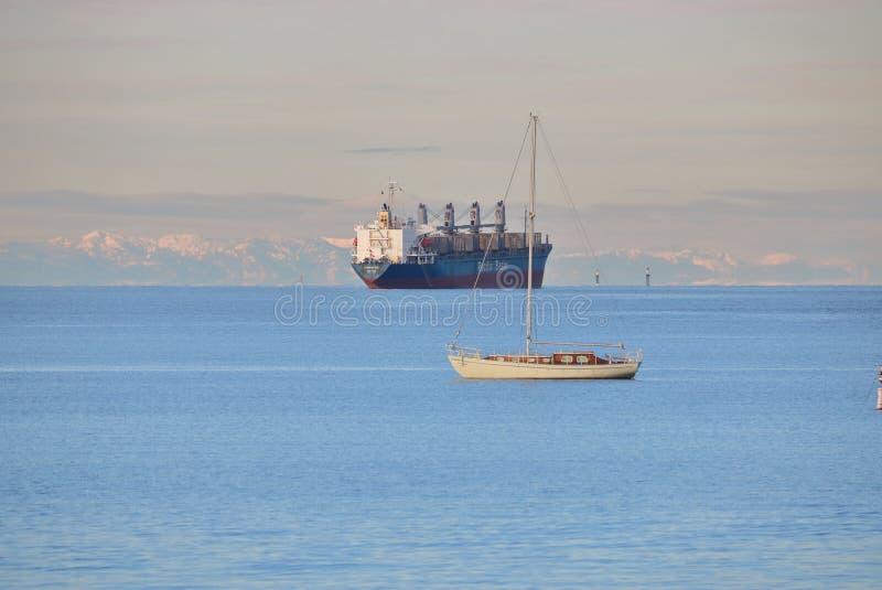 Download The Tasman Sea Freighter Editorial Image - Image: 83722435
