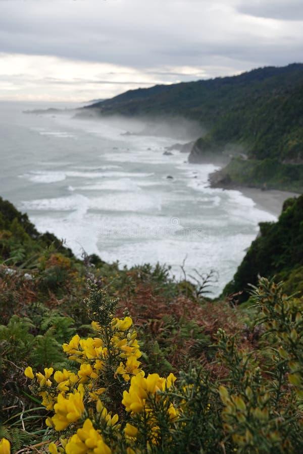 Tasman Sea in mist on West Coast of New Zealand. Tasman Sea near Punakaiki on the way to Cape Foulwind on the West Coast of the South Island of New Zealand stock photography