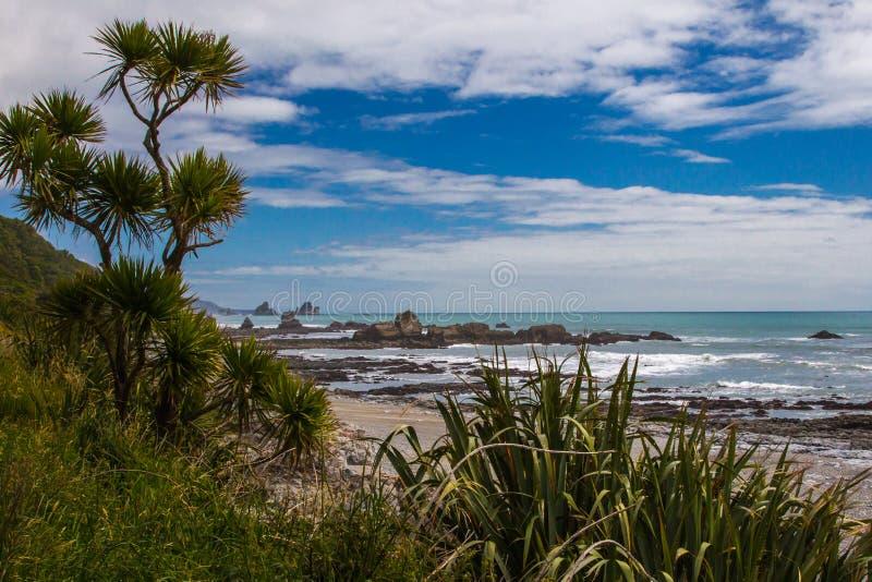 Tasman Sea Shoreline. Coastal Rock Formation Along Shore Of Tasman Sea With Cabage Tree and Flax In Foreground, Paparoa National Park, South Island, New Zealand royalty free stock photos