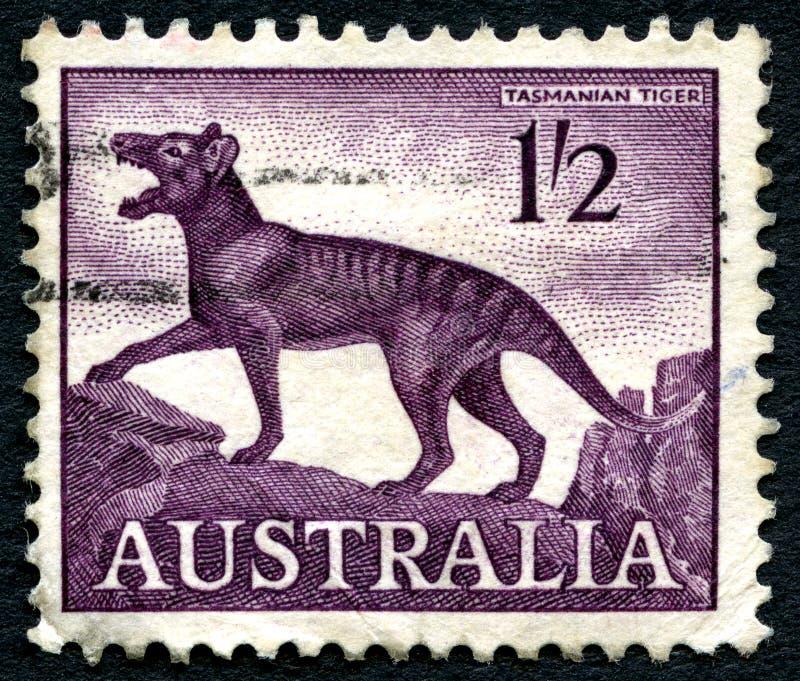 Tasmanian Tiger Australian Postage Stamp stock images