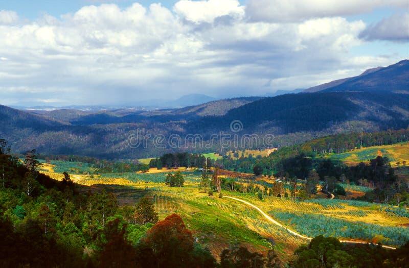 Tasmanien lizenzfreie stockfotos