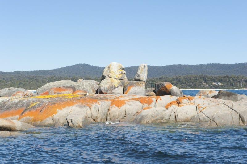 Tasmanien-Bucht von Feuern lizenzfreie stockfotos