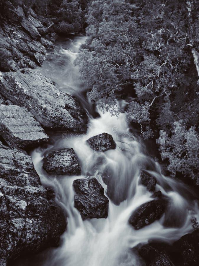 Tasmanische Wasserfälle stockfoto