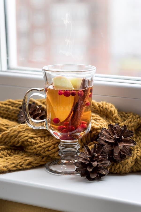 Tasse d'AutumnTea chaud avec la baie et la cannelle d'Apple près d'une boisson chaude d'écharpe de jaune de fenêtre pour le conce photos stock