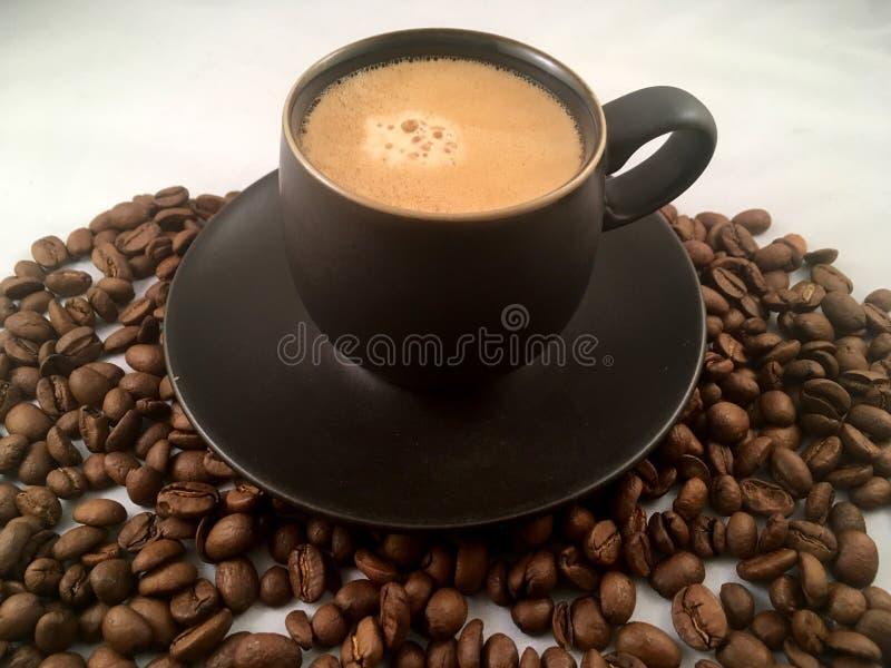 Tasse d'expresso et grains de café photo stock