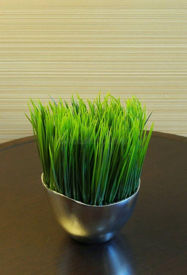 Tasse d'herbe photos stock