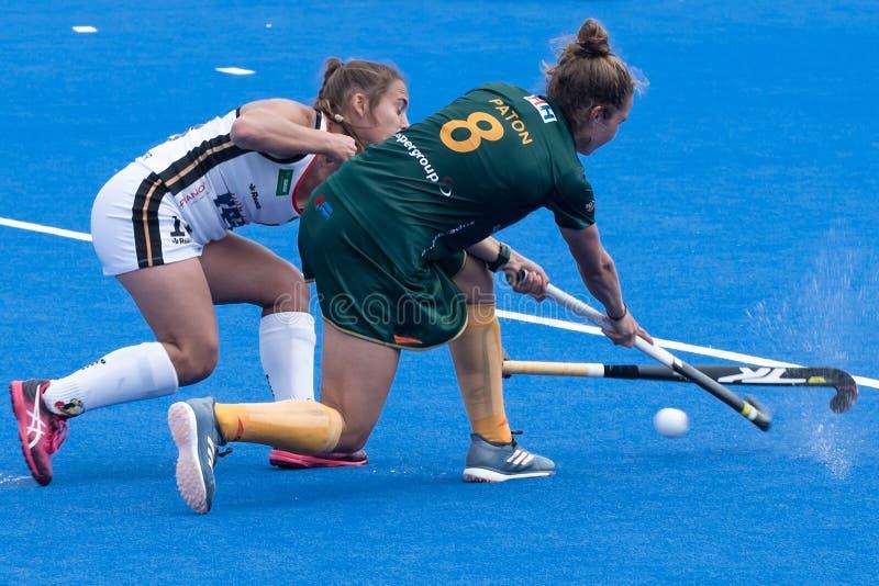 Tasse 2018 d'hockey du monde du ` s de femmes images libres de droits
