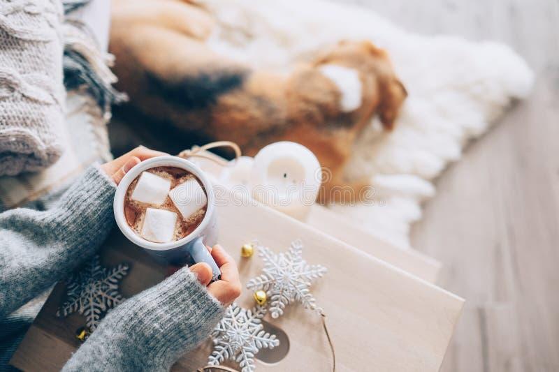 Tasse d'ith de mains de femme de fin de chocolat chaud vers le haut d'image, maison confortable, photos libres de droits