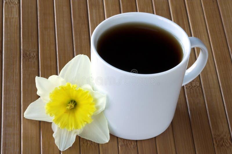 Tasse de café avec la fleur de jonquille images stock