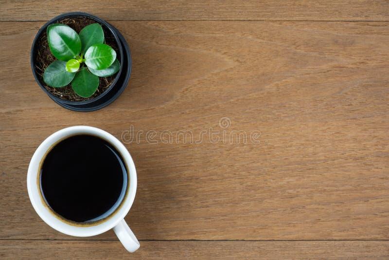 Tasse de caf? avec la petite usine sur le fond en bois de table Vue sup?rieure avec l'espace de copie images stock
