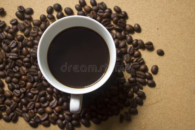 Tasse de café blanc placée sur des grains de café images stock