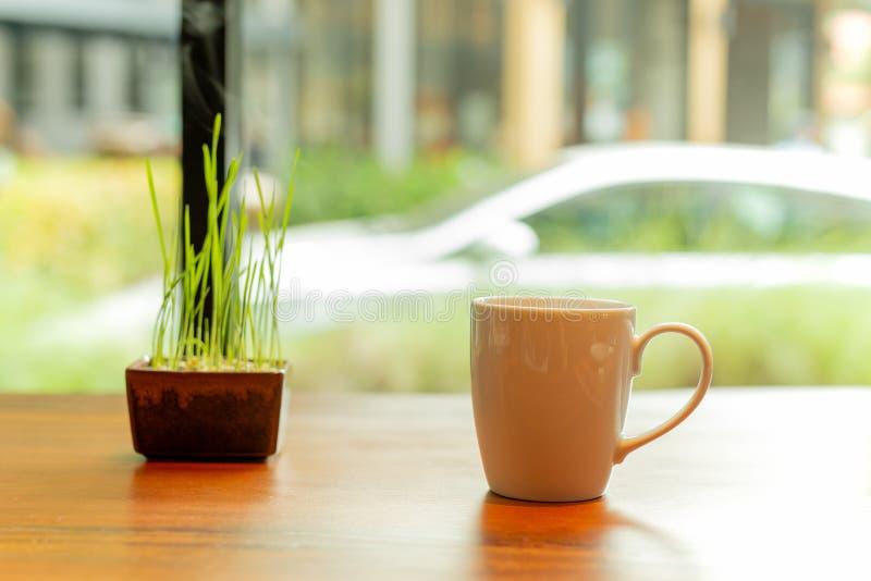 Tasse de café blanche de céramique avec de la fumée et petite usine sur la table en bois en café images libres de droits