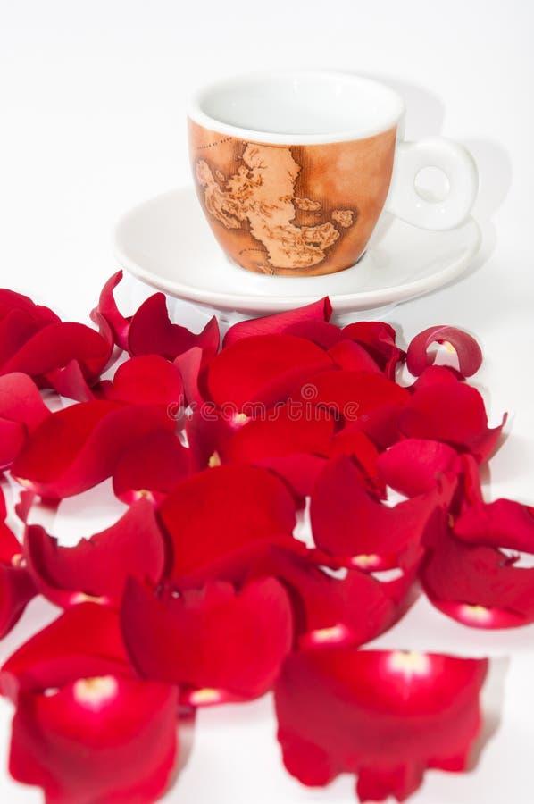 Tasse de café et de pétales de rose rouges au-dessus du fond blanc image libre de droits