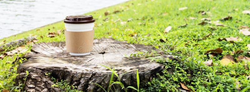 Tasse de café de papier ou tasse jetable sur le bois sur le Na de vert d'herbe images libres de droits
