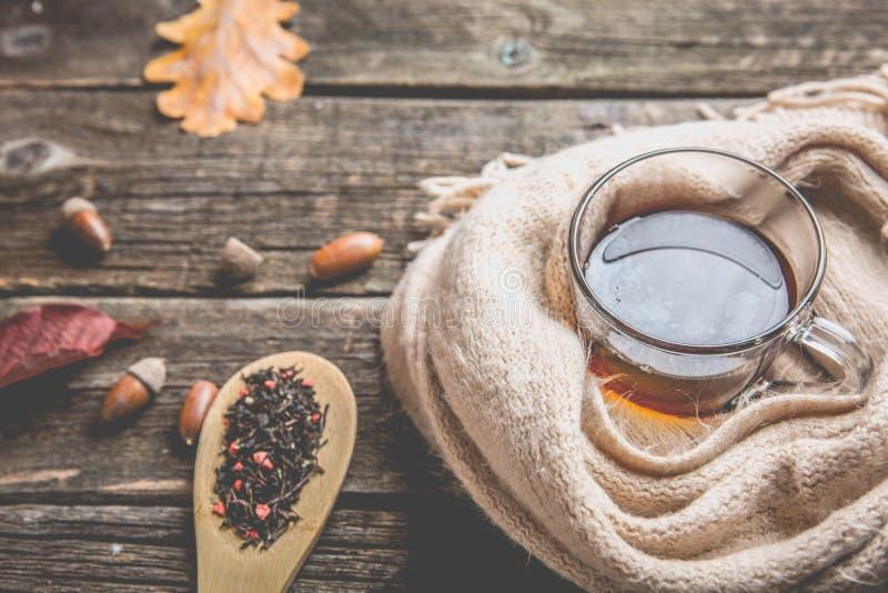 Tasse de composition en automne et en verre de thé et une écharpe chaude sur le fond en bois de table photos libres de droits