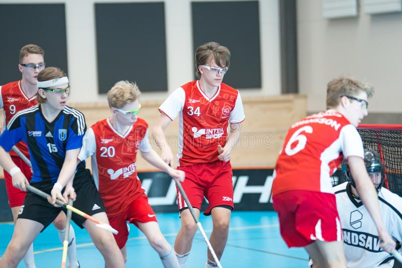 Tasse de Floorball en Suède photo libre de droits