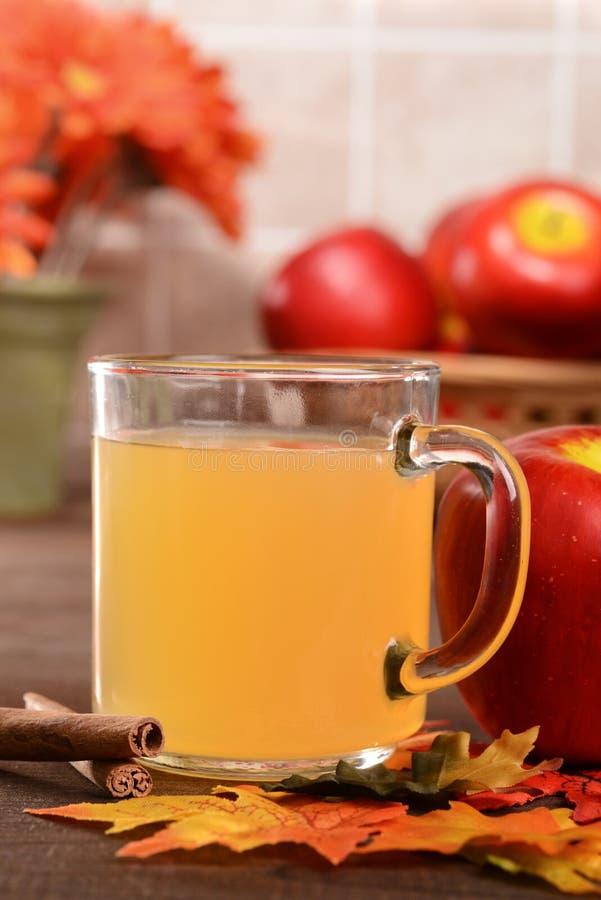 Tasse de plan rapproché de cidre de pomme photos stock