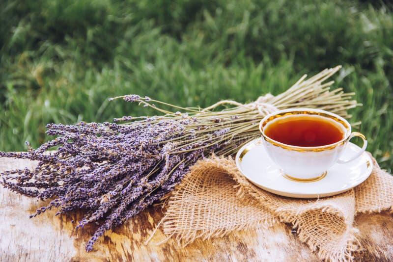 Tasse de thé chaud dans le jardin sur l'herbe verte Thé chaud aromatique avec la lavande images libres de droits