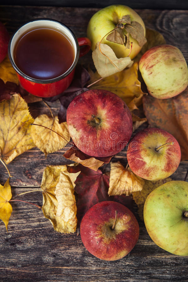 Tasse de thé chaude un jour d'automne Fond de Tableau avec des feuilles et a photographie stock