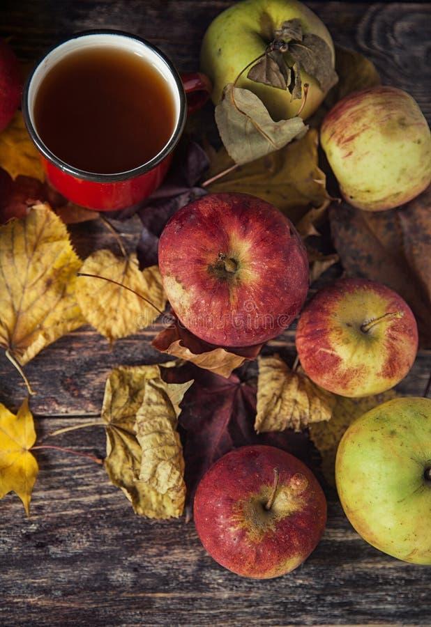 Tasse de thé chaude un jour d'automne Fond de Tableau avec des feuilles et a photos libres de droits