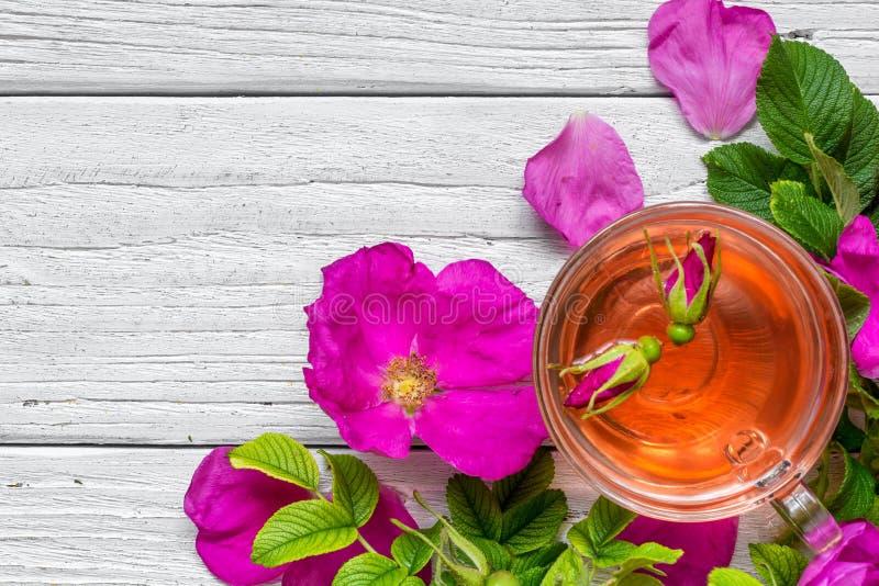 Tasse de thé de fines herbes de hanche rose au-dessus du fond en bois blanc photo libre de droits