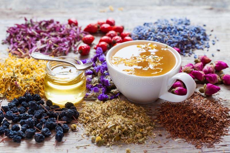 Tasse de thé, de pot de miel, d'herbes curatives et d'assortiment de tisane photographie stock libre de droits
