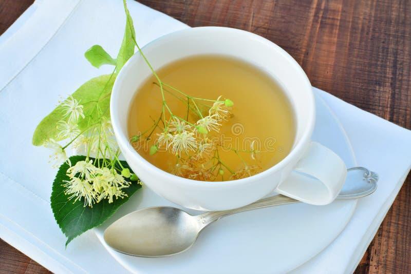 Tasse de thé de tilleul photographie stock libre de droits
