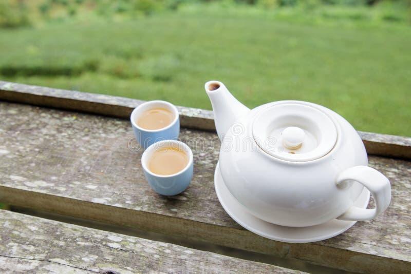 Tasse de thé et pot de thé photo stock