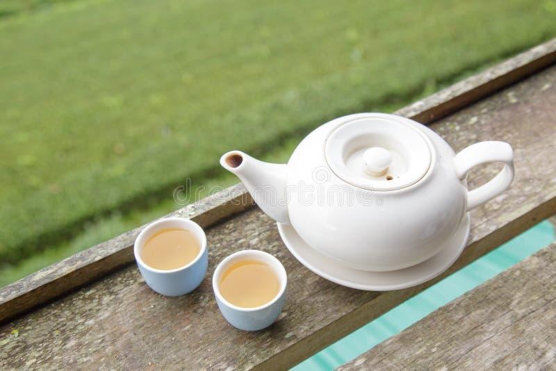 Tasse de thé et pot de thé image libre de droits