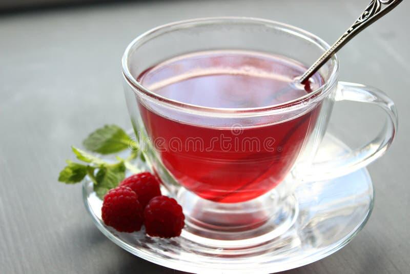 Tasse de thé isolée dans la tasse en verre transparente avec la soucoupe photos libres de droits