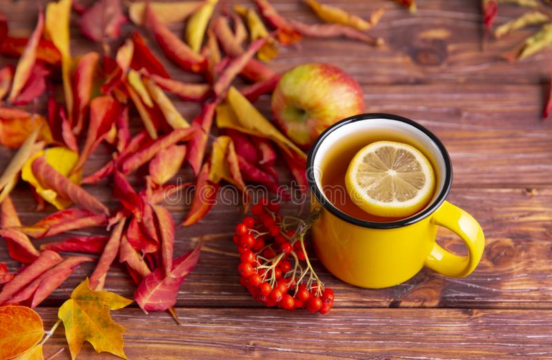 Tasse de thé jaune avec tranche de citron, feuilles d'automne colorées rouge et jaune, pomme et bouquet de canneberges sur tta b image libre de droits