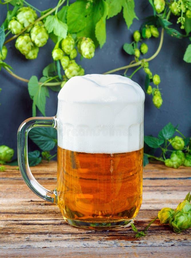 Tasse en verre de bière d'or fraîche froide sur la table en bois images libres de droits