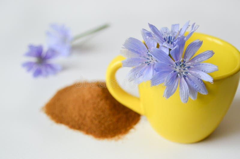 Tasse jaune avec des fleurs de chicorée, poudre de chicorée à l'arrière-plan Fleurs et th? de chicor?e de chicor?e Foyer s?lectif image stock