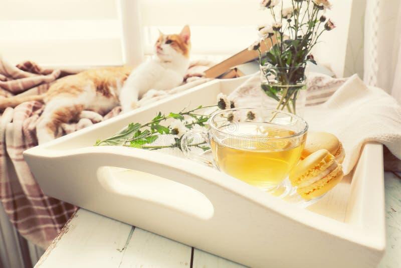 Tasse Tee, Makronen, Chrysanthemenblumen und Bücher stockfotografie
