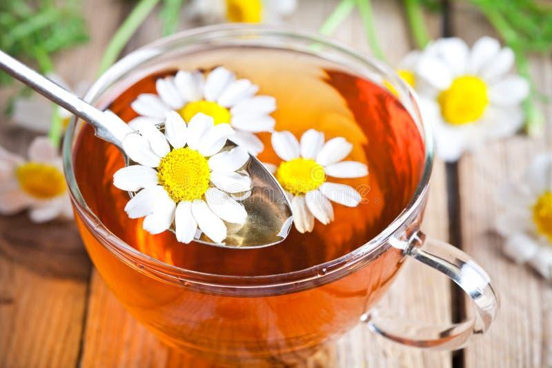 Tasse Tee mit Kamillenblumen stockfoto