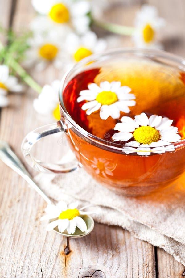 Tasse Tee mit Kamillenblumen lizenzfreies stockfoto