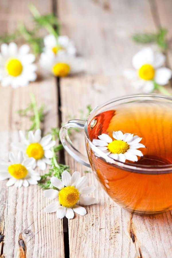Tasse Tee mit Kamillenblumen lizenzfreie stockfotografie